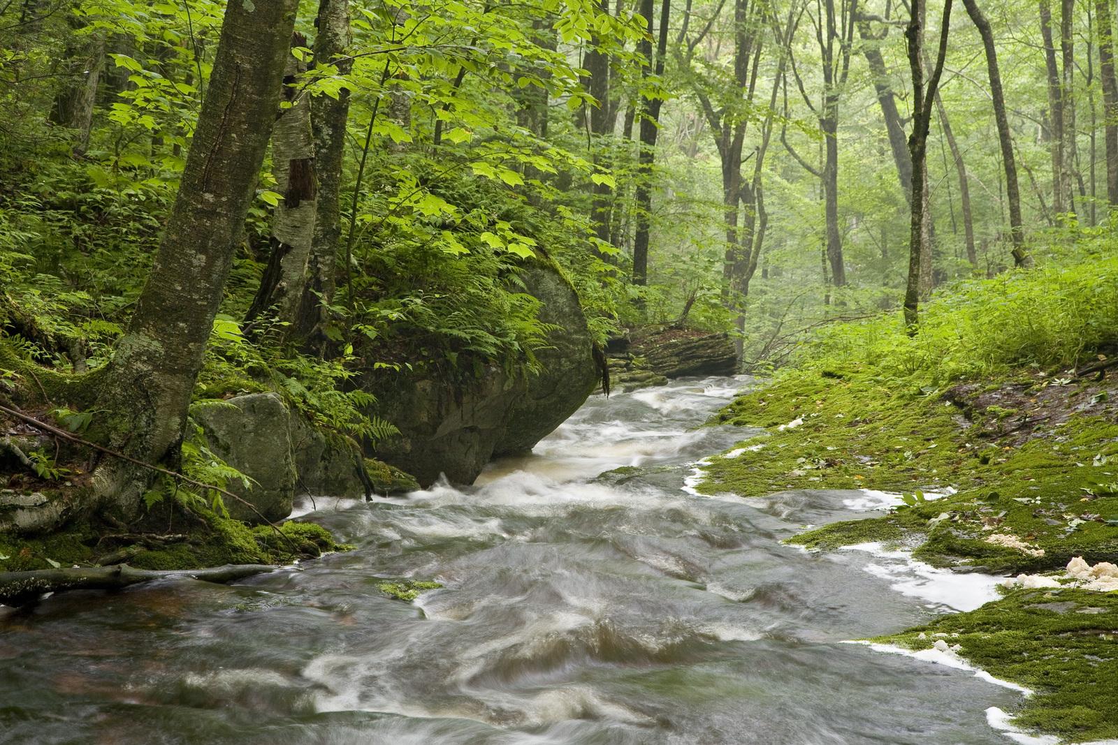 mountain stream : Photos, Diagrams & Topos : SummitPost