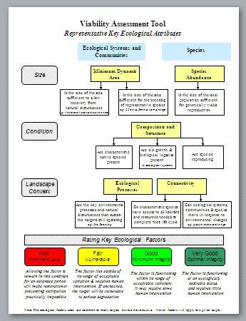 Viability Assessment Tool Representative Key Ecological