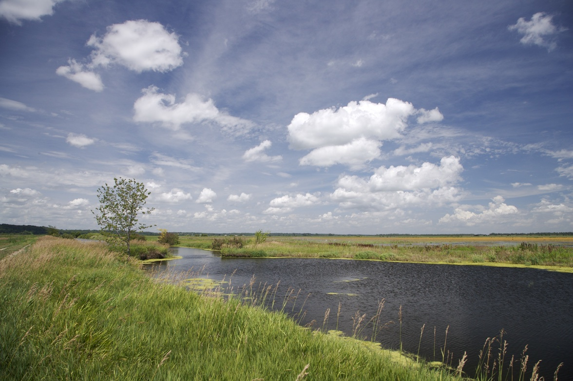 environmental flow nature conservancy components flows conservationgateway