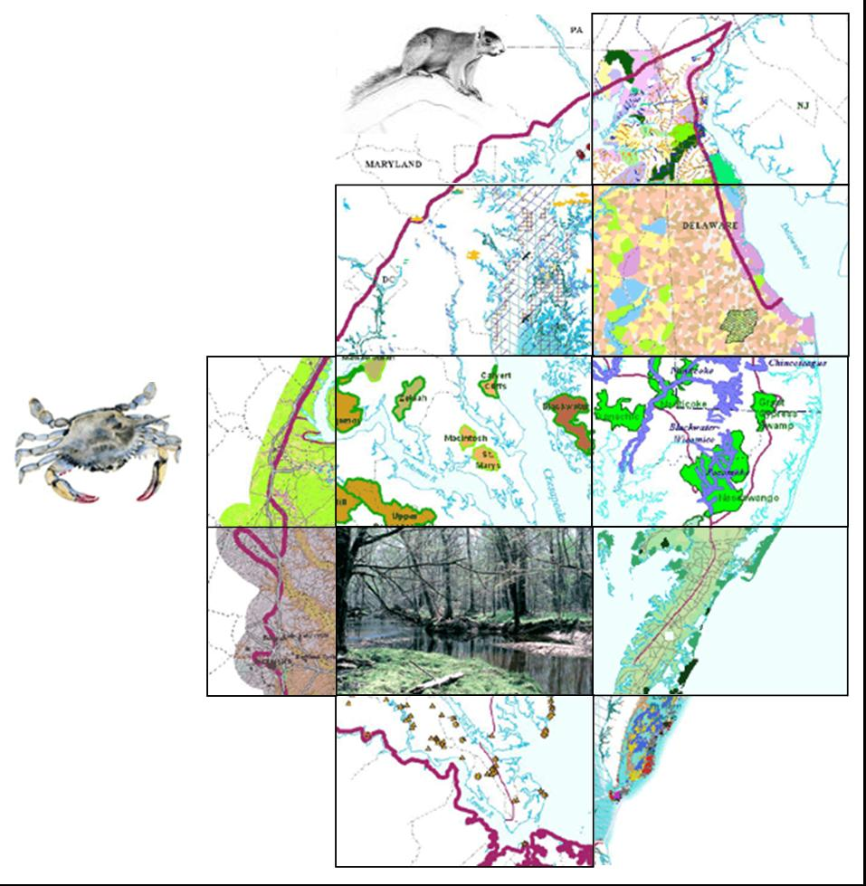 Coastal Virginia Map.Chesapeake Bay Lowlands