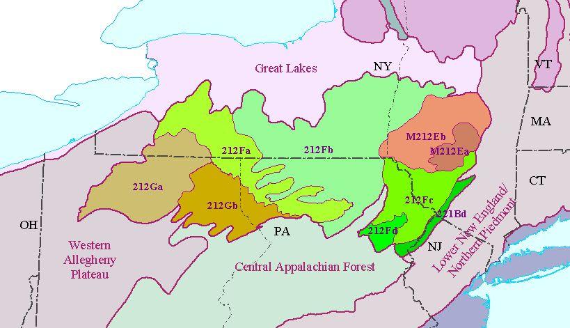 High Allegheny Plateau
